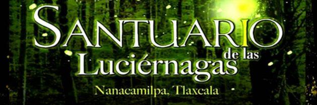 Todo listo para la temporada de luciérnagas en Tlaxcala