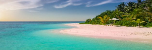 Científicos de la UNAM se unen a la estrategia contra el sargazo en las playas de Quintana Roo